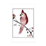 Cardinal Sticker (Rectangle 50 pk)