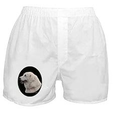 akbash long coat Boxer Shorts