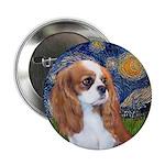 Starry / Cavalier Pup (BL) 2.25