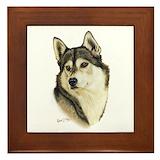 Siberian huskies Framed Tiles