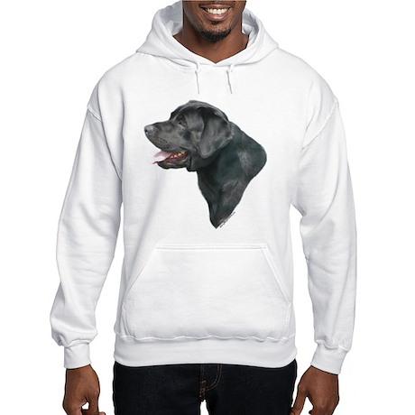 Lab 7 Hooded Sweatshirt