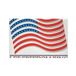 let freedom ring Rectangle Magnet (10 pack)