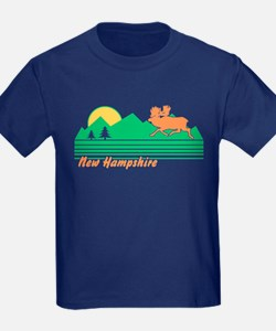 New Hampshire T