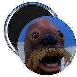 Walrus Single