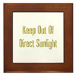 Direct Sunlight Framed Tile