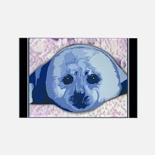 Funny Harp seals Rectangle Magnet