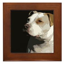 Funny American pit bull Framed Tile