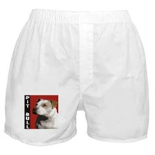 American Pit Bull Terrier Boxer Shorts