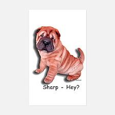 Chinese Shar-pei Puppy Sharp Hey? Decal