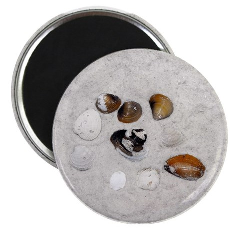 """Seashells and Sand 2.25"""" Magnet (10 pack)"""