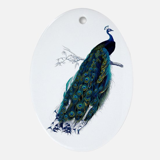 Peacock Ornament (Oval)