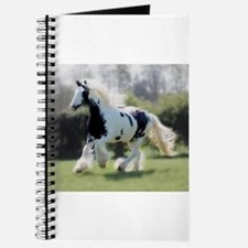 Gypsy Horse Mare Journal