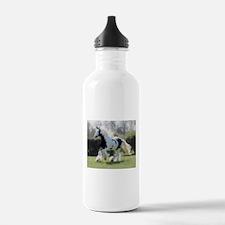 Gypsy Horse Mare Water Bottle