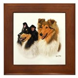 Rough collie Framed Tiles