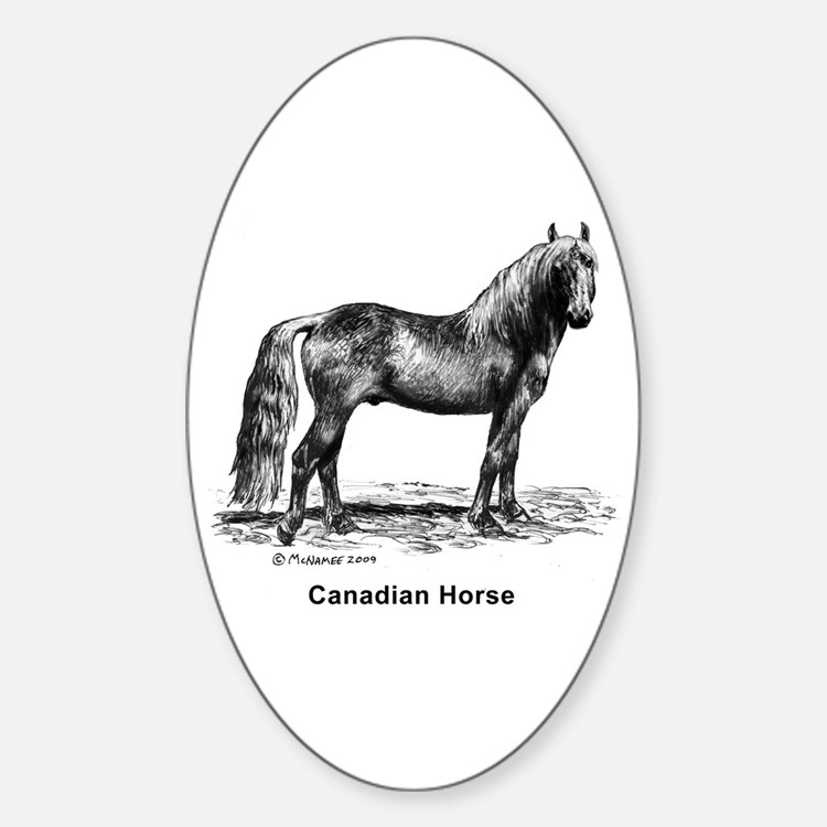 Canadian Horse Decal