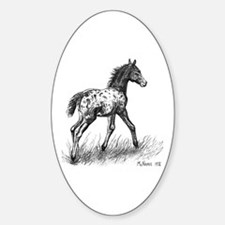 Appaloosa Sticker (Oval)