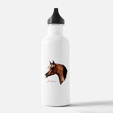 Bay Arabian Horse Water Bottle
