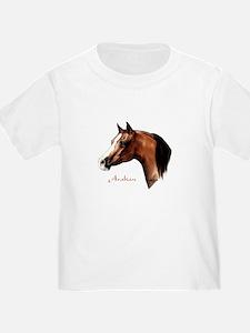 Bay Arabian Horse T