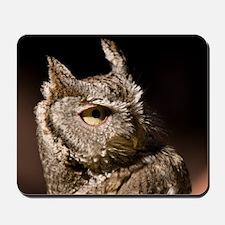 Burrowing Owl Profile Mousepad