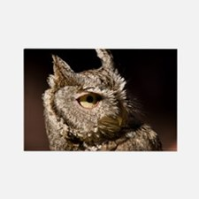 Burrowing Owl Profile Rectangle Magnet