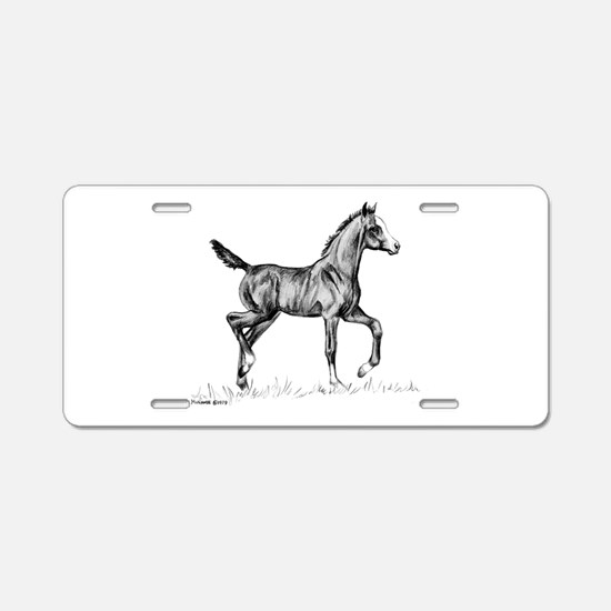 Arabian Foal Aluminum License Plate