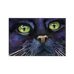 Charlemagne Cat Magnet