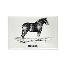Belgian Horse Rectangle Magnet