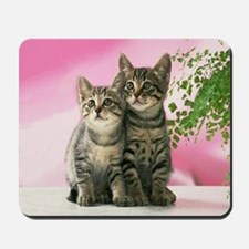 Buddies Mousepad