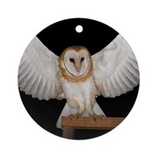 Great Wings Ornament (Round)
