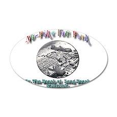Nu-Pike Fun Park 22x14 Oval Wall Peel