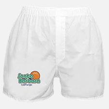 Santa Barbara California Boxer Shorts