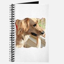 Golden Retriever and Bone Journal