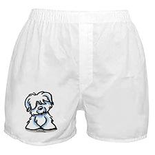 Coton Cartoon Boxer Shorts