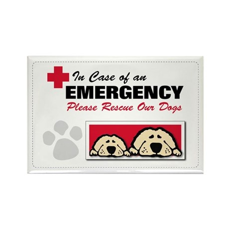 Please Rescue Dogs Rectangle Magnet (10 pack)