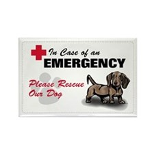 Save My Dachshund Rectangle Magnet