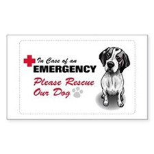 Save My Pointer Rectangle Decal