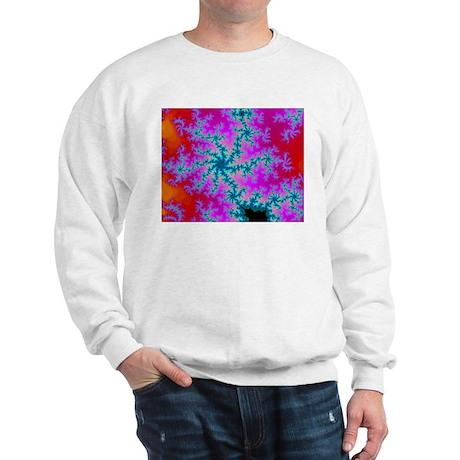 Sweatshirt with fractal