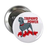 Tripawd Single