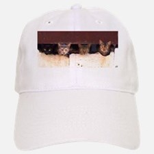 The Original Feral 4Cats Baseball Baseball Cap