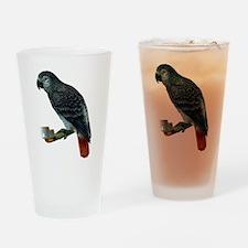 Gray Parrot Bird Drinking Glass