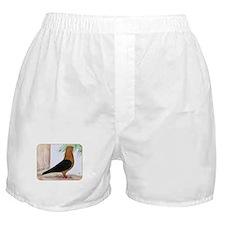 Gold Blackwing Archangel Boxer Shorts