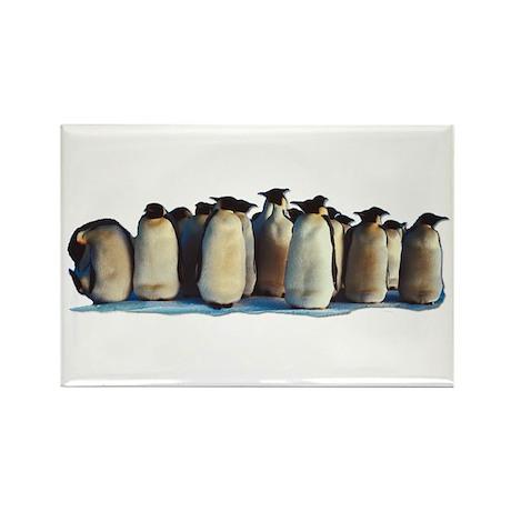 Penguin Rectangle Magnet (10 pack)