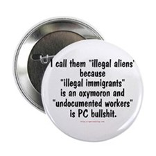 Illegal Aliens Button