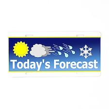 Mixed Forecast Aluminum License Plate