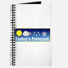 Mixed Forecast Journal