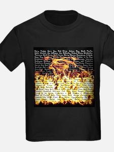 Billy Joel Fire T