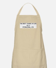 Best Things in Life: Pomona BBQ Apron
