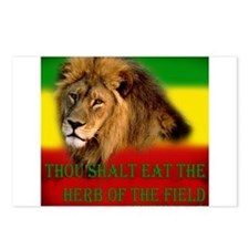 Rastafarian Lion Postcards (Package of 8)