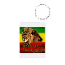 Rastafarian Lion Keychains
