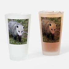 Opossum Drinking Glass